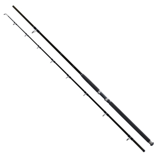 Prut Deluxe Catfish 2,7m 500g - Giants Fishing
